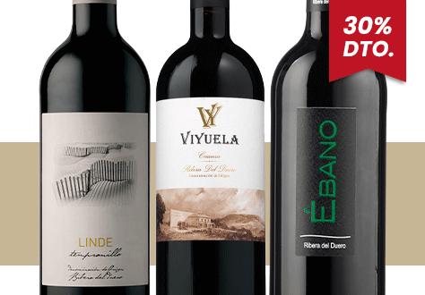 Colección Feria del Vino Tintos