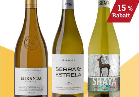 Auswahl Weinmesse Weissweine