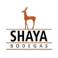 Bodegas Shaya