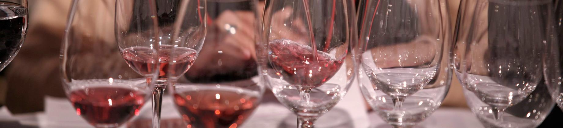 Curso de iniciación a la cata de vinos tintos