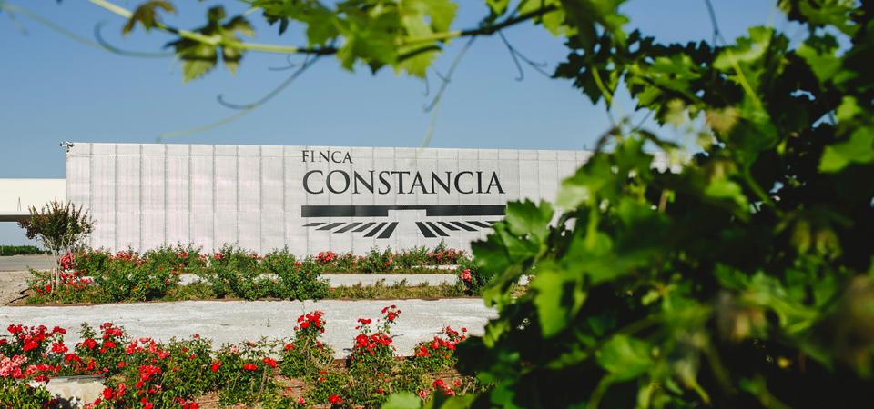 Bodegas Finca Constancia