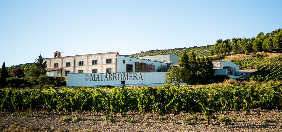 Bodega Matarromera