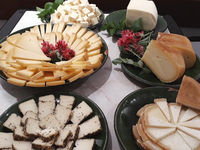 Exquisita degustación de quesos en Menorca