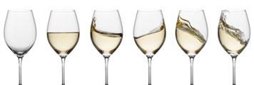 Curso de cata de vinos blancos